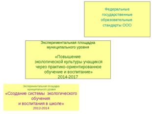 Экспериментальная площадка муниципального уровня «Создание системы экологиче