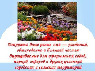 Декорати́вные расте́ния — растения, обыкновенно и большей частью выращиваемые