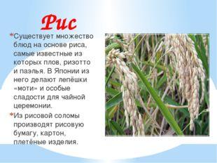 Рис Существует множество блюд на основе риса, самые известные из которых плов