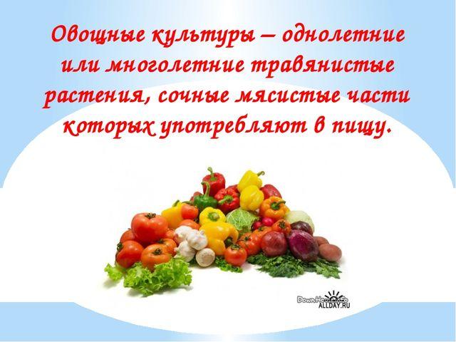 Овощные культуры – однолетние или многолетние травянистые растения, сочные мя...