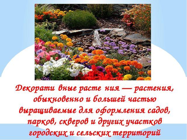 Декорати́вные расте́ния — растения, обыкновенно и большей частью выращиваемые...