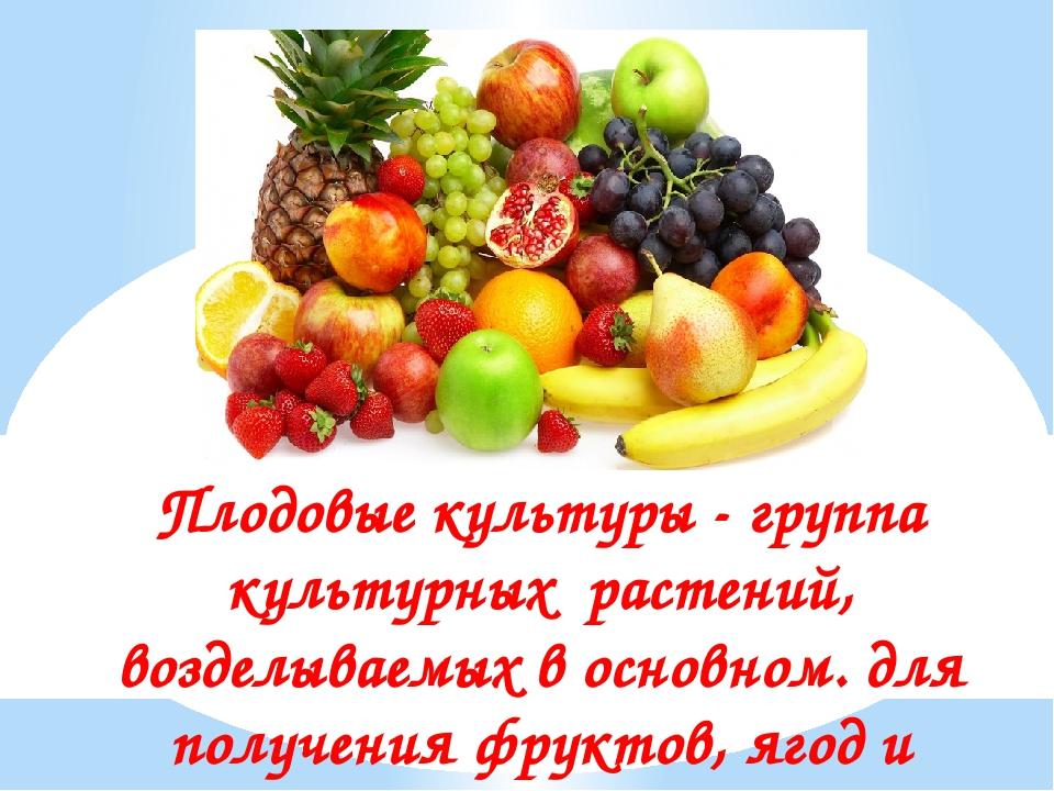 Плодовые культуры - группа культурных растений, возделываемых в основном. для...