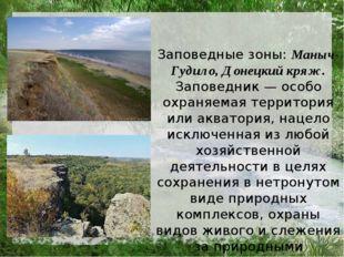 Заповедные зоны: Маныч-Гудило, Донецкий кряж. Заповедник — особо охраняемая т