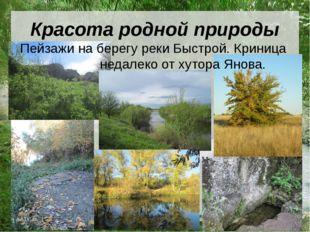 Красота родной природы Пейзажи на берегу реки Быстрой. Криница недалеко от ху