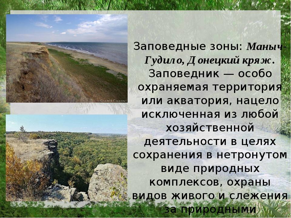 Заповедные зоны: Маныч-Гудило, Донецкий кряж. Заповедник — особо охраняемая т...