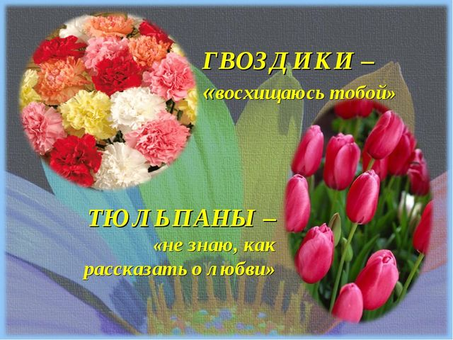 ТЮЛЬПАНЫ – «не знаю, как рассказать о любви» ГВОЗДИКИ – «восхищаюсь тобой»