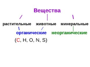 Вещества ⁄ │ \ растительные животные минеральные органические неорганические