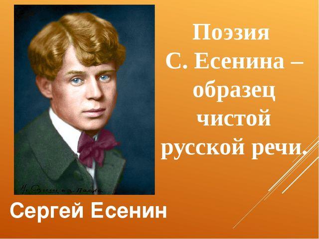Сергей Есенин Поэзия С. Есенина – образец чистой русской речи.