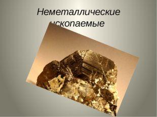 Неметаллические ископаемые