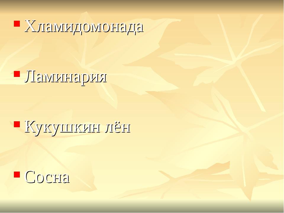 Хламидомонада Ламинария Кукушкин лён Сосна