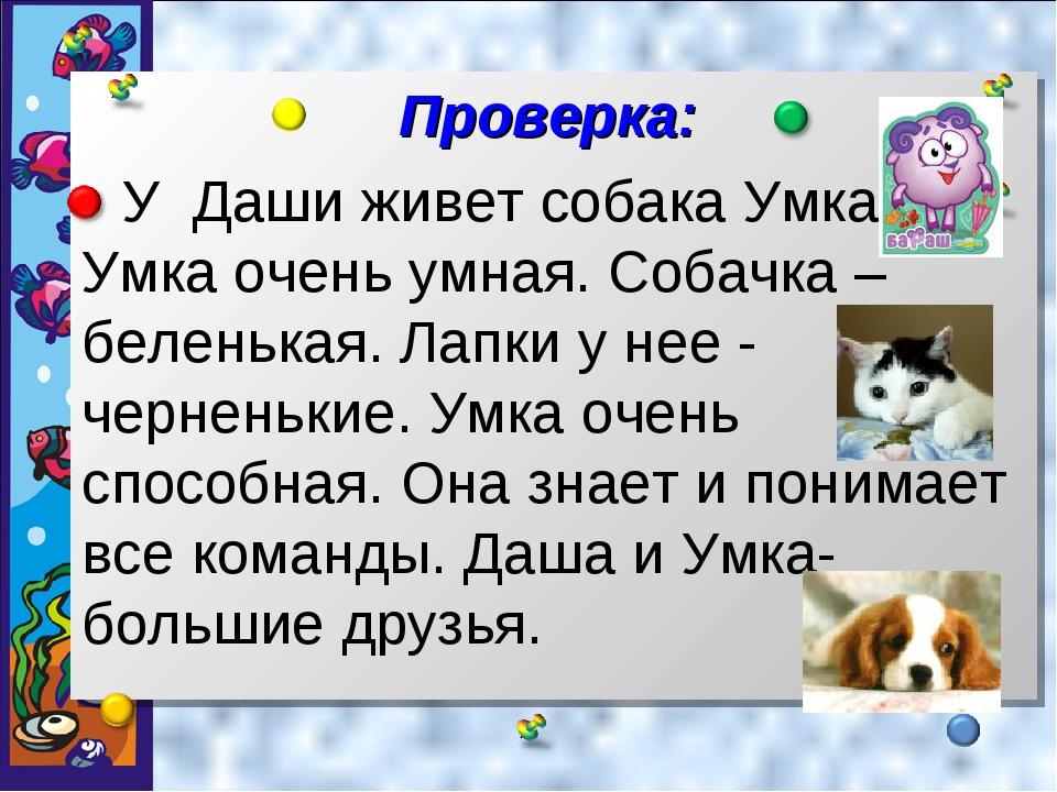 Проверка: У Даши живет собака Умка. Умка очень умная. Собачка – беленькая....