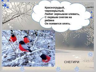 - Красногрудый, чернокрылый, Любит зернышки клевать, С первым снегом на ря