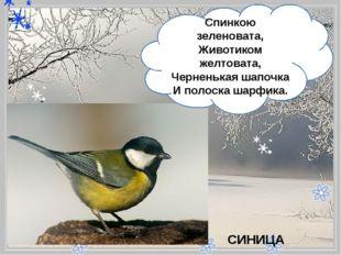- Спинкою зеленовата, Животиком желтовата, Черненькая шапочка Иполоска ша