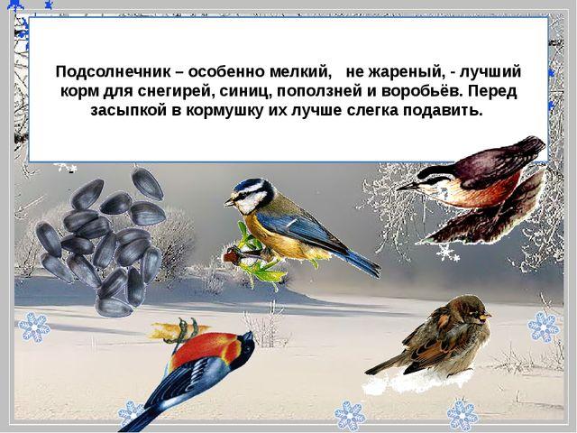- Подсолнечник – особенно мелкий, не жареный, - лучший корм для снегирей,...