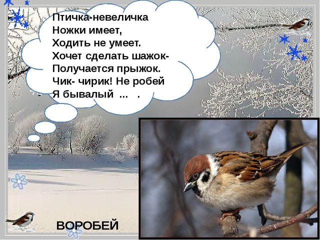 - Птичка-невеличка Ножки имеет, Ходить не умеет. Хочет сделать шажок- Полу...