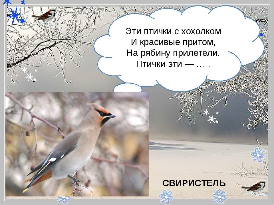 - Эти птички с хохолком И красивые притом, На рябину прилетели. Птички эти...