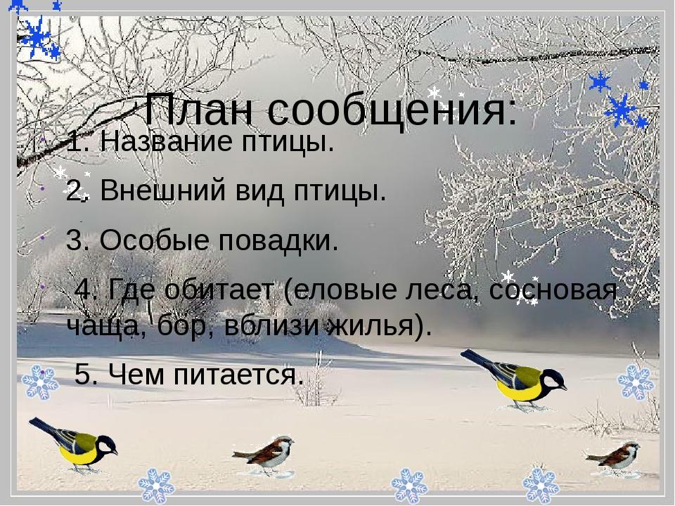 - План сообщения: 1. Название птицы. 2. Внешний вид птицы. 3. Особые повад...