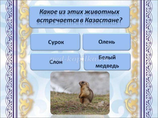 hello_html_m9355795.jpg