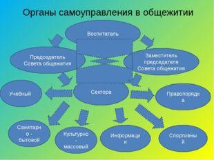 Органы самоуправления в общежитии Воспитатель Председатель Совета общежития З