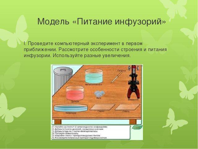 Модель «Питание инфузорий» I. Проведите компьютерный эксперимент в первом при...