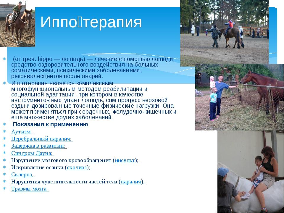 (от греч. hippo— лошадь)— лечение с помощью лошади, средство оздоровительн...