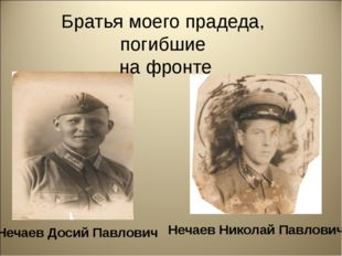 Братья моего прадеда, погибшие на фронте Нечаев Досий Павлович Нечаев Никола