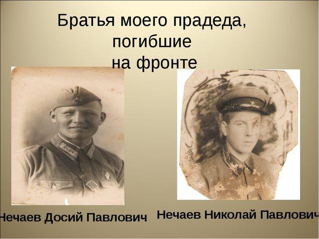 Братья моего прадеда, погибшие на фронте Нечаев Досий Павлович Нечаев Никола...