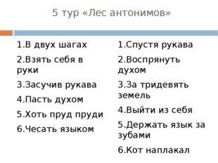 5 тур «Лес антонимов» 1.В двух шагах 2.Взять себя в руки 3.Засучив рукава 4.П