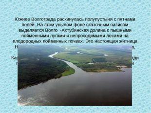 Южнее Волгограда раскинулась полупустыня с пятнами полей. На этом унылом фоне