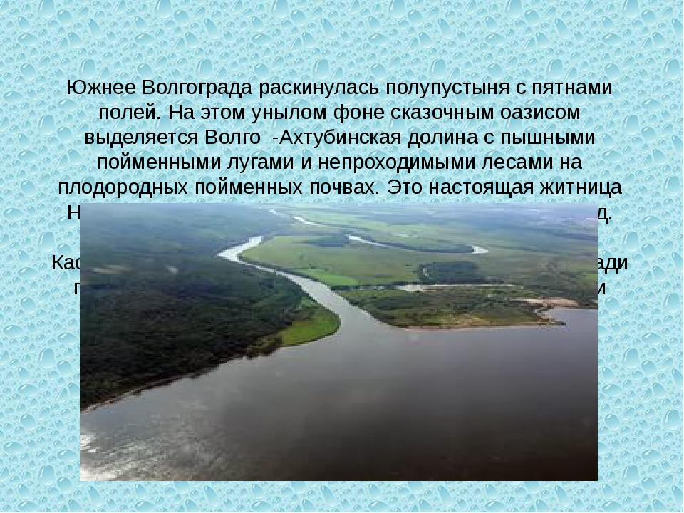 Южнее Волгограда раскинулась полупустыня с пятнами полей. На этом унылом фоне...