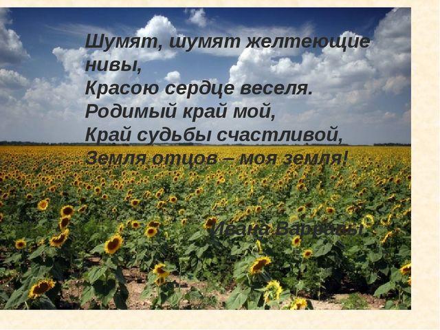 Шумят, шумят желтеющие нивы, Красою сердце веселя. Родимый край мой, Край су...