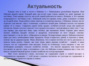Актуальность Каждое лето я езжу в гости к бабушке в с. Новоильинск республики
