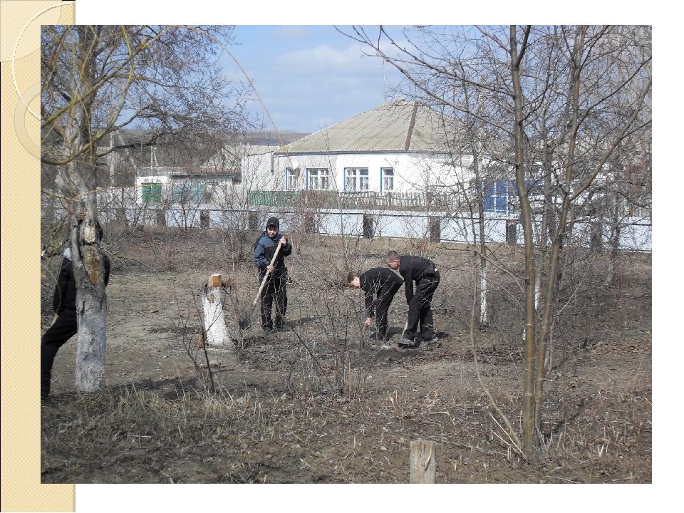С.Данцевка в фото