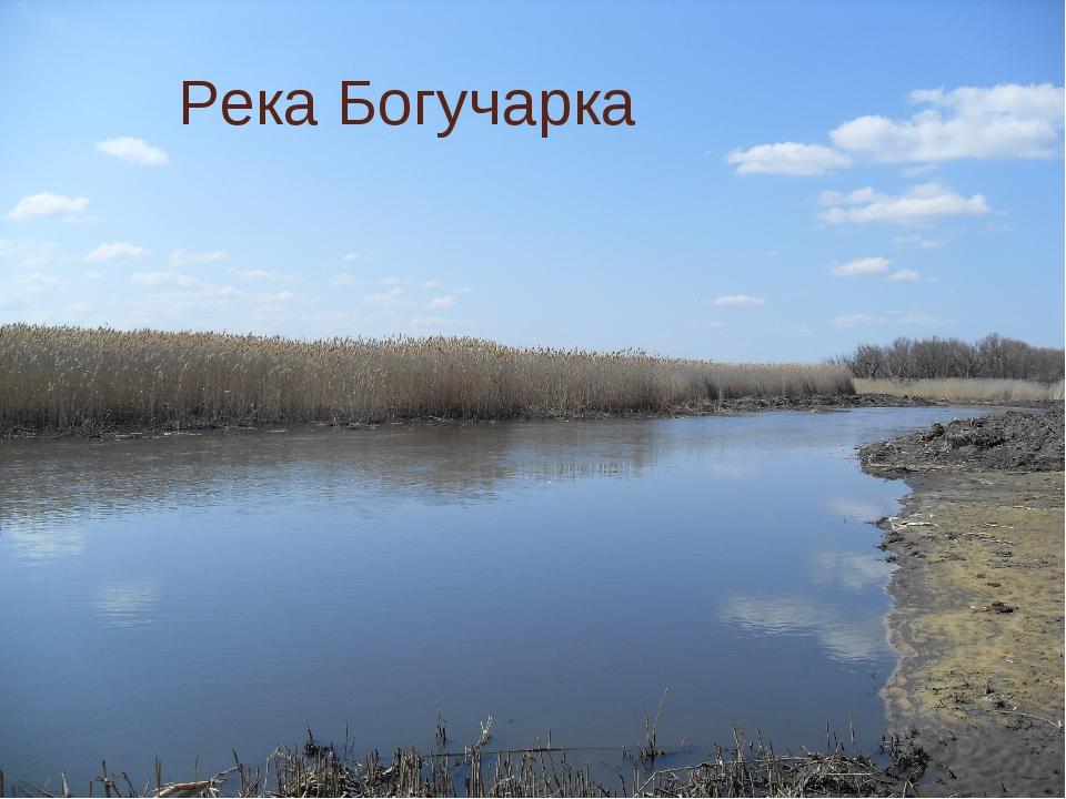 Река Богучарка