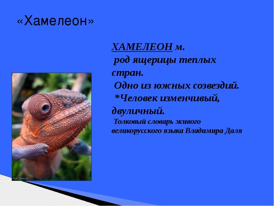 «Хамелеон» ХАМЕЛЕОН м. род ящерицы теплых стран. Одно из южных созвездий. *Че...