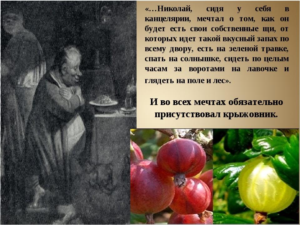«…Николай, сидя у себя в канцелярии, мечтал о том, как он будет есть свои соб...
