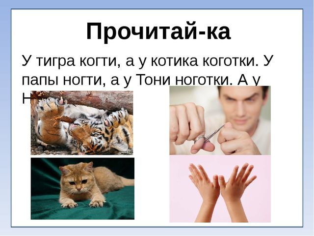 Прочитай-ка У тигра когти, а у котика коготки. У папы ногти, а у Тони ноготк...