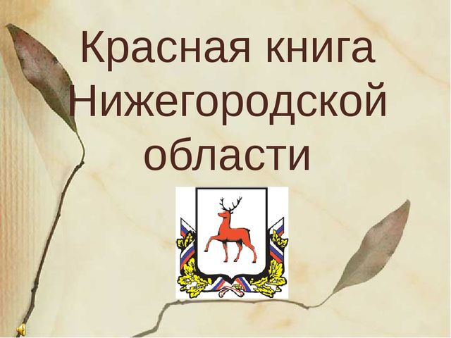 Красная книга Нижегородской области