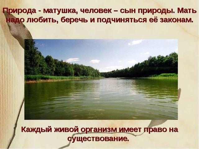 Природа - матушка, человек – сын природы. Мать надо любить, беречь и подчинят...
