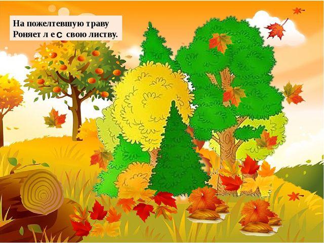 На пожелтевшую траву Роняет л е в свою листву. с ©Ольга Михайловна Носова