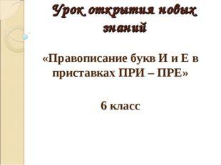 Урок открытия новых знаний «Правописание букв И и Е в приставках ПРИ – ПРЕ» 6