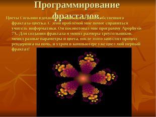 Программирование фракталов. Цветы Сильвии вдохновили меня на создание собстве