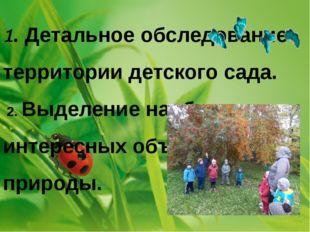 1. Детальное обследование территории детского сада. 2. Выделение наиболее инт