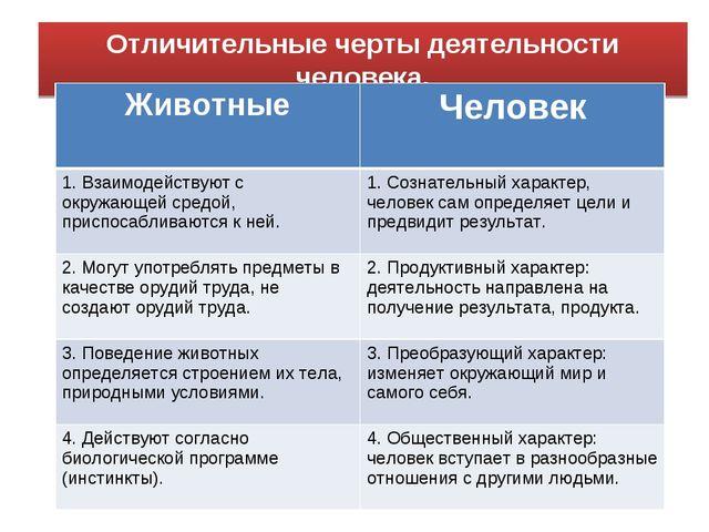 Отличительные черты деятельности человека. ЖивотныеЧеловек 1. Взаимодействую...