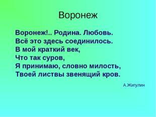 Воронеж Воронеж!.. Родина. Любовь. Всё это здесь соединилось. В мой краткий в