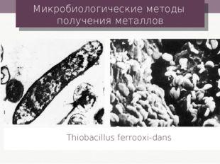 Микробиологические методы получения металлов Thiobacillus ferrooxi-dans