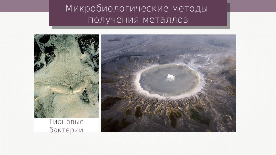 Микробиологические методы получения металлов Тионовые бактерии