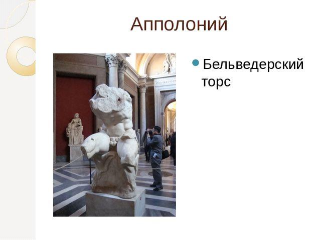 Апполоний Бельведерский торс