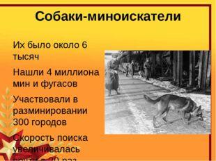 Собаки-миноискатели Их было около 6 тысяч Нашли 4 миллиона мин и фугасов Учас
