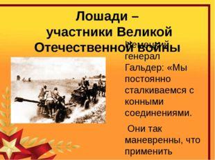 Лошади – участники Великой Отечественной войны Немецкий генерал Гальдер: «Мы